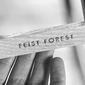 interview :: feist forest
